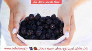 خواص شاه توت یا توت سیاه