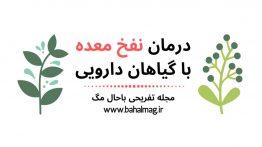 درمان-نفخ-معده-با-گیاهان-دارویی