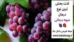 لذت-بخش-ترین-نوع-درمان-میوه-درمانی