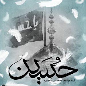 تصاویر زیبا از حرم امام حسین