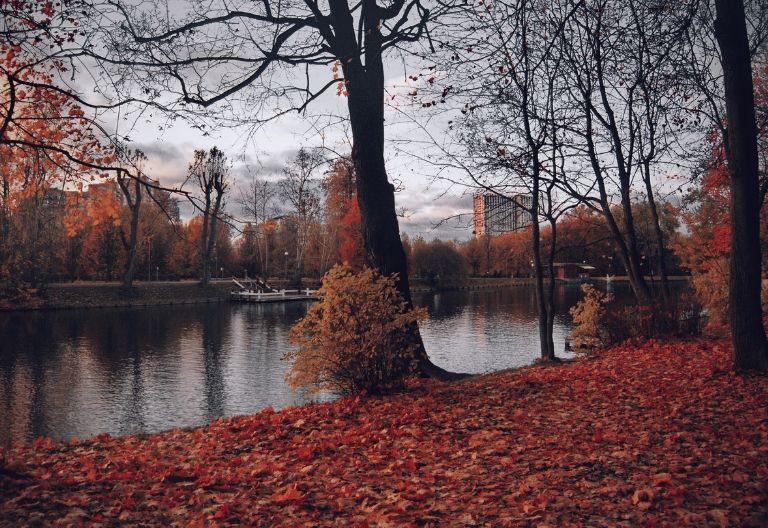 تصویر زیبای پس زمینه پاییز
