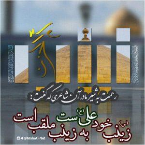 عکس نوشته حضرت زینب ویژه محرم