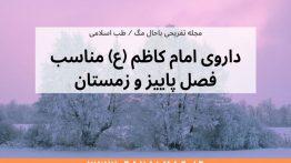 داروی-امام-کاظم-برای-فصل-پاییز-و-زمستان
