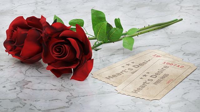 دو شاخه گل قرمز