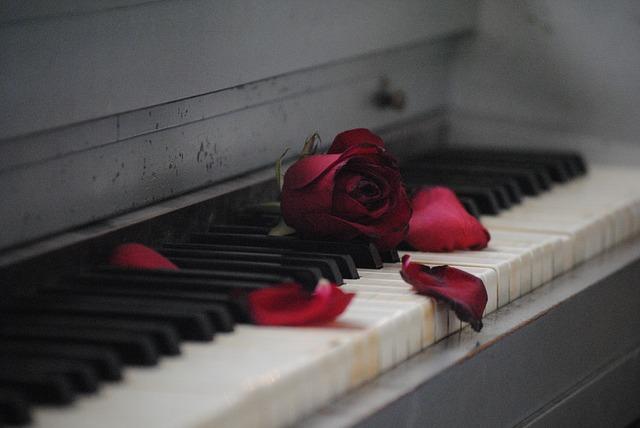 عکس پروفایل پیانو و گل قرمز
