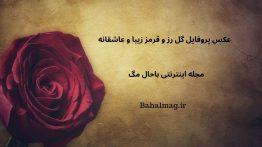 عکس پروفایل گل رز و قرمز زیبا و عاشقانه