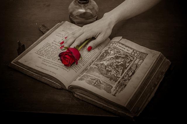 عکس پروفایل گل قرمز روی دفتر