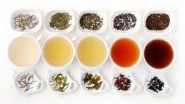 بهترین چای ها برای کاهش وزن