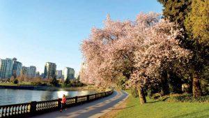 طبیعت شهر ونکوور کانادا