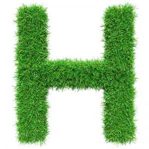 عکس زیبای حرف h با سبزه