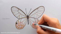 ویدیوی آموزش نقاشی و رنگ آمیزی پروانه زیبا