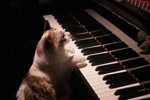 عکس پروفایل پیانو زیبا
