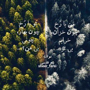 عکس نوشته شعر مولانا من با رخ چون خزان خرابم بی تو