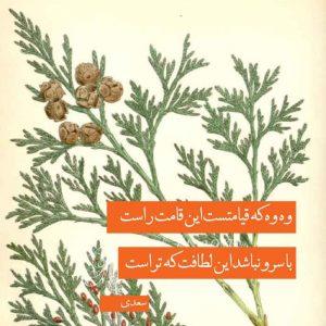 عکس پروفایل شعر سعدی با سرو نباشد این لطافت که توراست