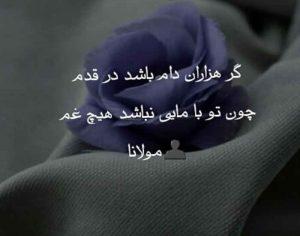 عکس پروفایل شعر سعدی