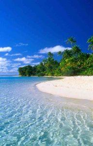 عکس پروفایل ساحل زیبا