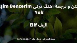 متن و ترجمه آهنگ ترکی Eşim Benzerim Yok الیف Elif